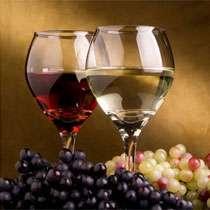 Фотопечать - Вино
